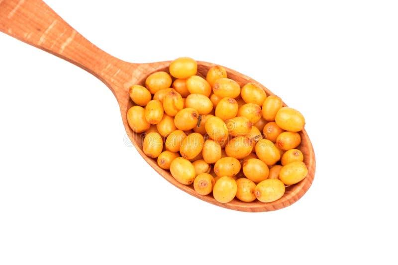 Ягоды крушины в ложке стоковое фото