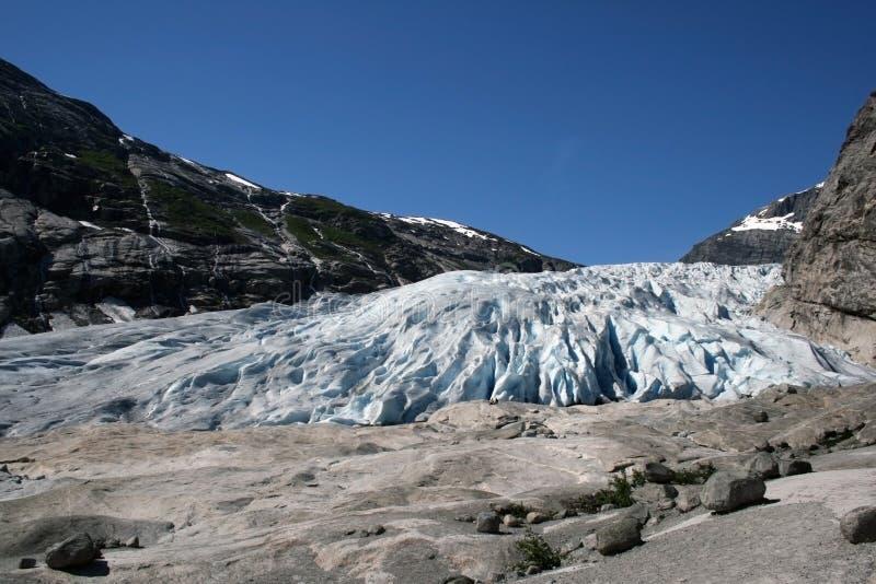 язык ледника стоковая фотография