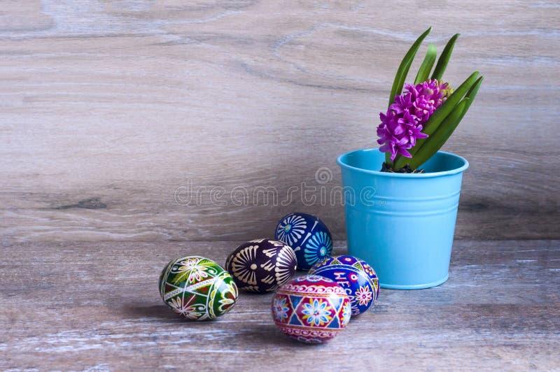 Яичка и гиацинт цвета пасхи стоковые изображения rf