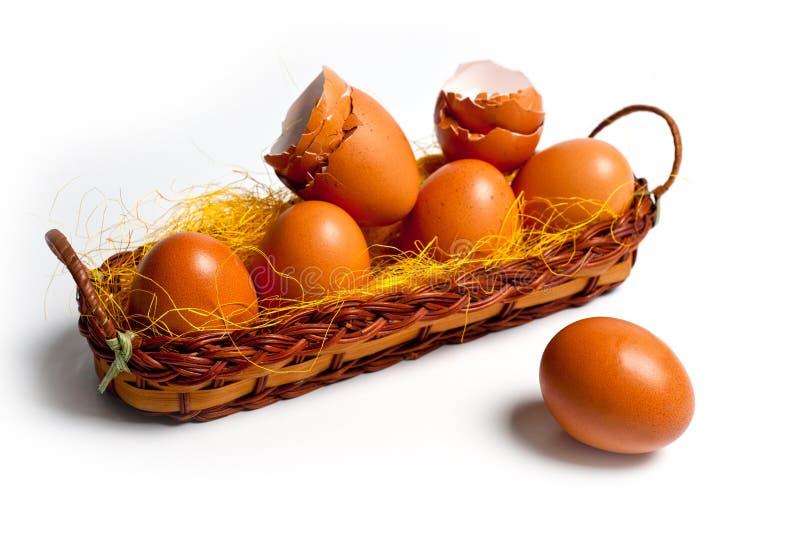 Яичка коричневого цыпленка в корзине на белой предпосылке для пасхи стоковое фото rf