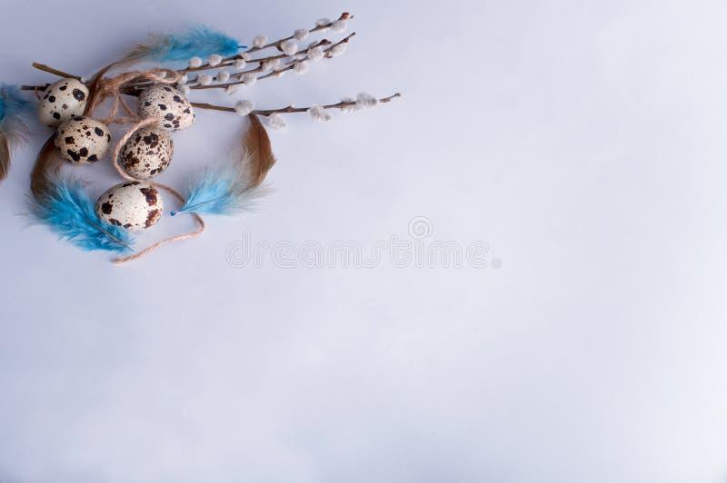 Яичка триперсток пасхи стоковые фото