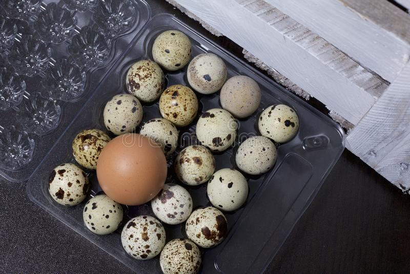 Яичко цыпленка среди яичек триперсток Они лежат в пластмасовом контейнере Рядом с деревянной коробкой стоковые изображения