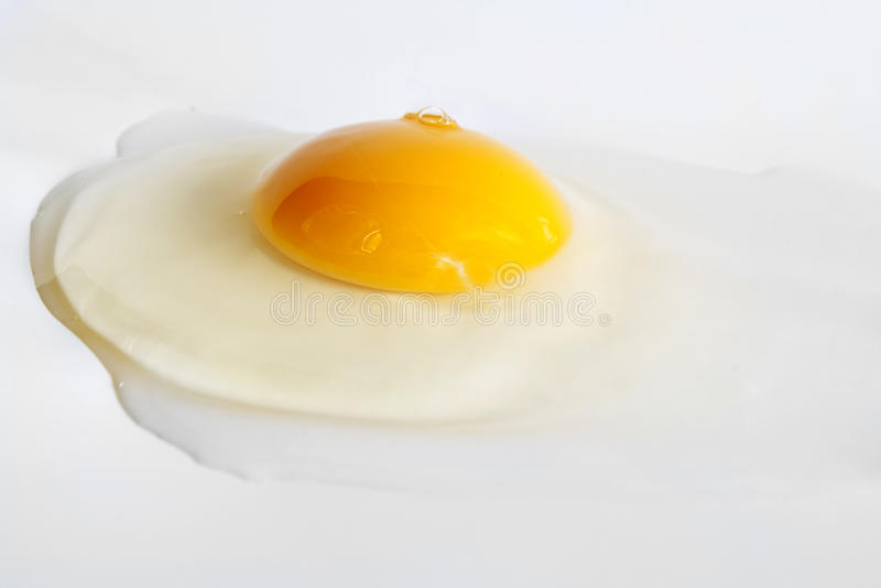 яичко стоковые фотографии rf