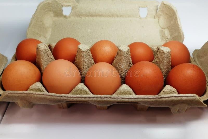 Яйца Брауна в супермаркете коробки на месте стоковые изображения