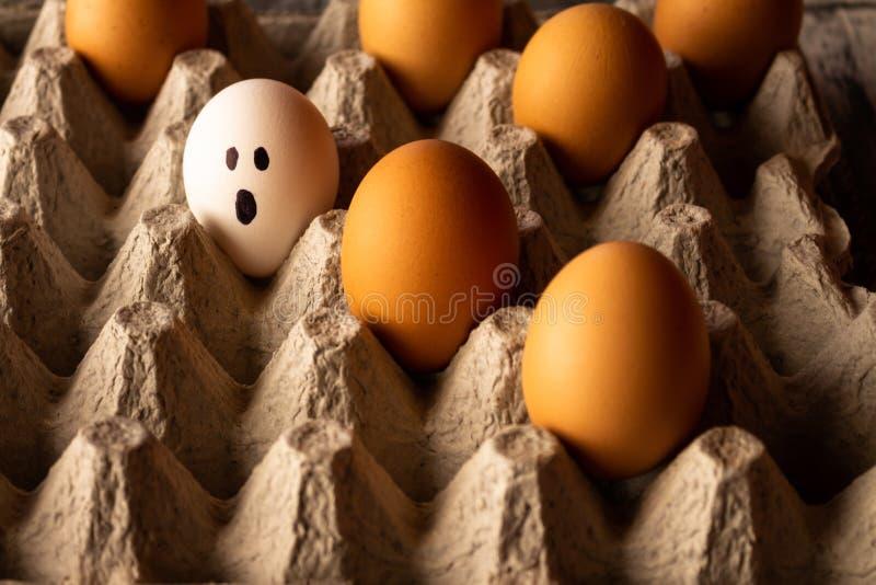 Яйца в картонной коробке Яйца со смешными сторонами покрасили Humanized концепция объекта Концепция различных и разнообразных этн стоковое фото rf