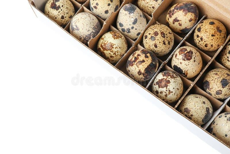 Яйца триперсток в коробке коробки изолированной на белой предпосылке стоковое фото