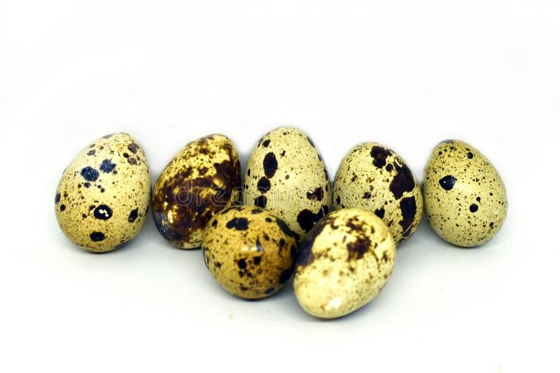 Яйца триперсток изолируют на белой предпосылке стоковые изображения