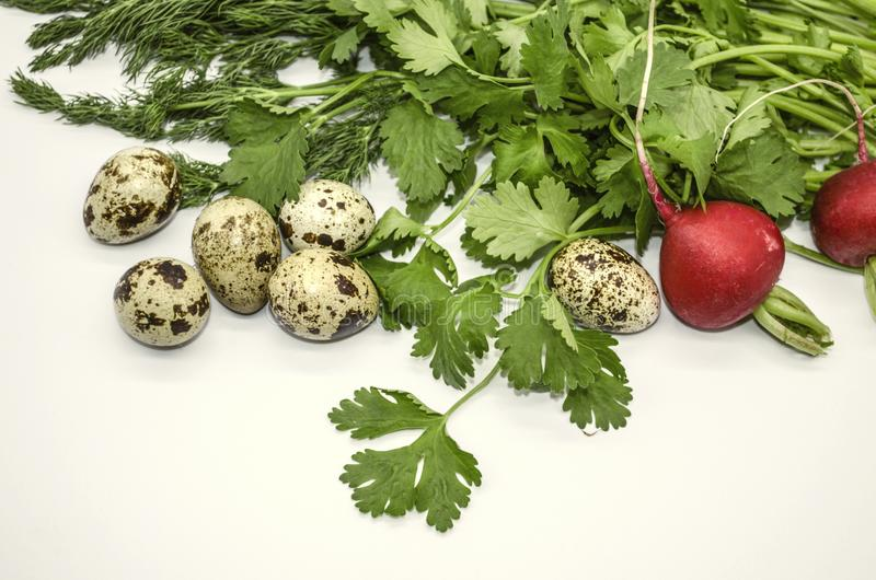 Яйца триперсток с cilantro весны, укропом и круглой красной небольшой реди стоковые изображения