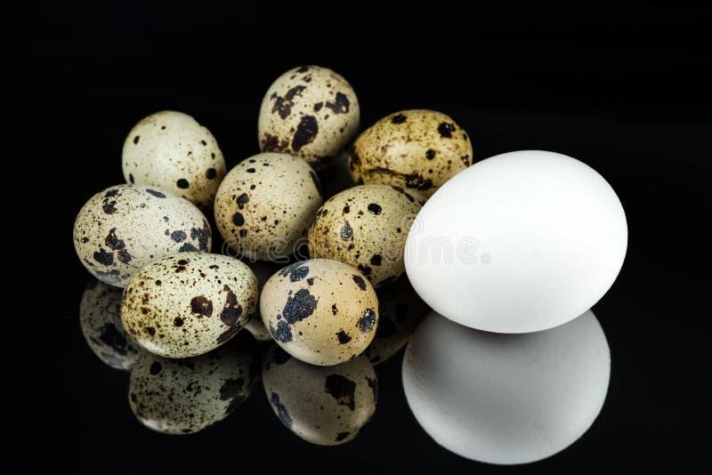 Яйца цыпленка и триперсток на черной поверхности зеркала стоковое фото rf