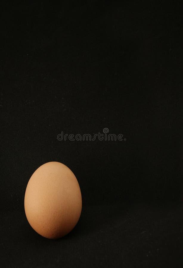 Яйца цыпленка на заднем плане стоковые изображения