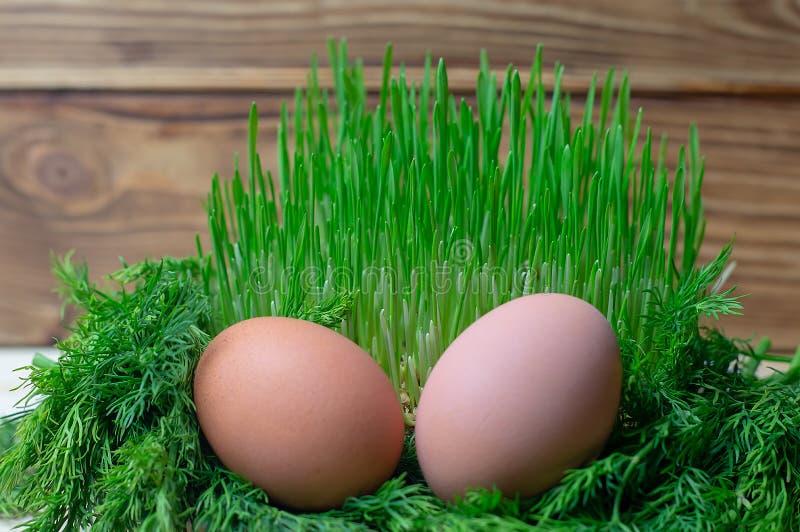 Яйцо в здоровом питании пасхе диеты фитнеса зеленой травы стоковая фотография rf