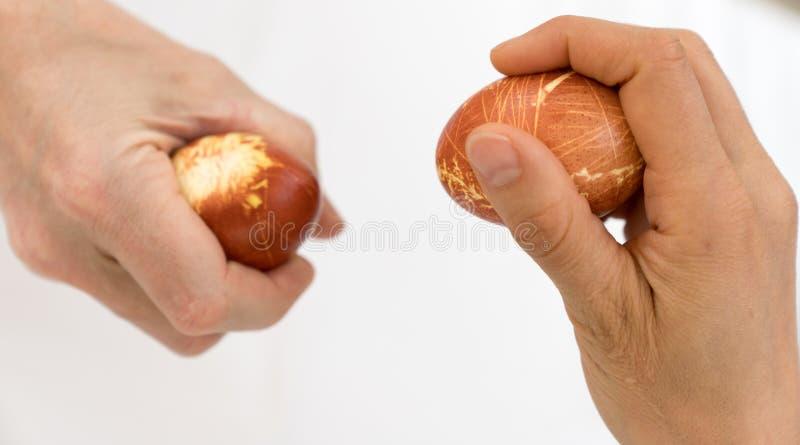 Яйцо человека и женщины выстукивая на пасхе с естественно покрашенными яйцами стоковые фото