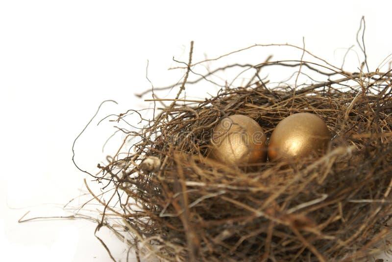 Яйц из гнезда выхода на пенсию стоковые изображения rf