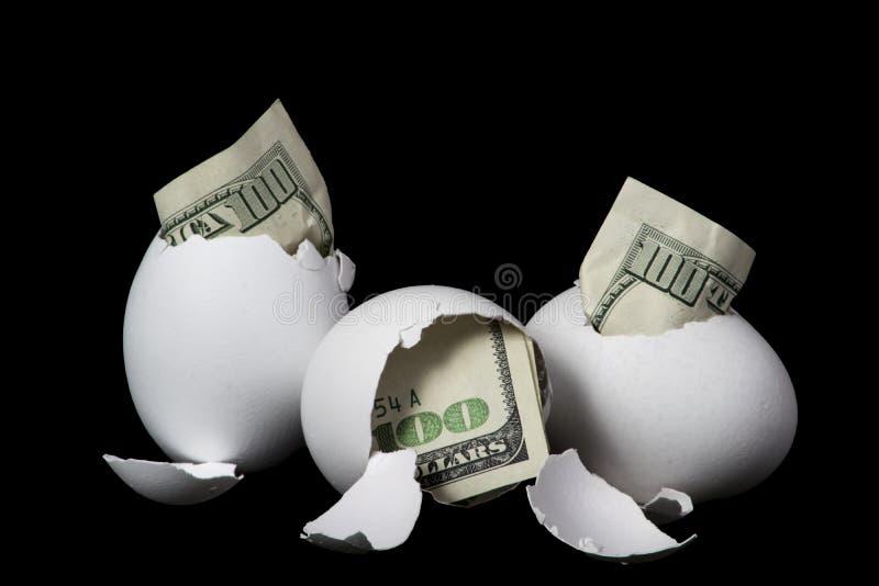 Яйц из гнезда стоковое изображение