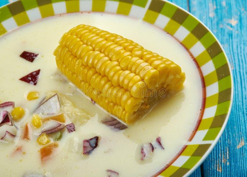 Ямайский суп мозоли стоковая фотография