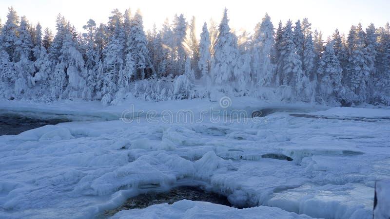 Январь в Швеции стоковое фото