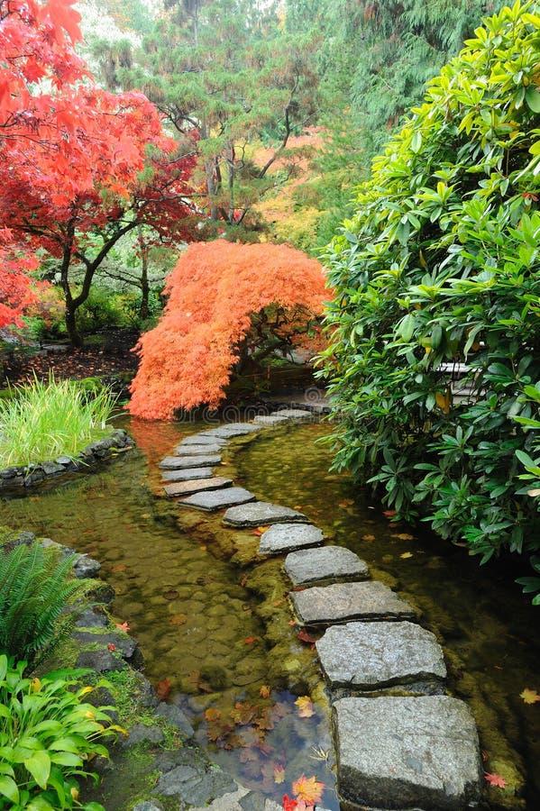 японец сада осени стоковые фотографии rf