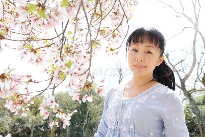 Японская женщина с вишневым цветом стоковая фотография rf
