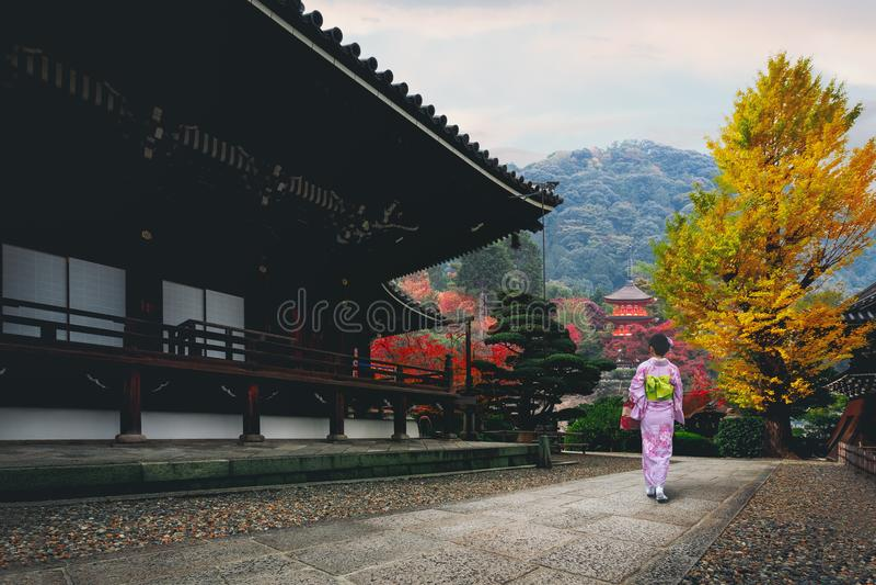 Японская женщина стоковая фотография