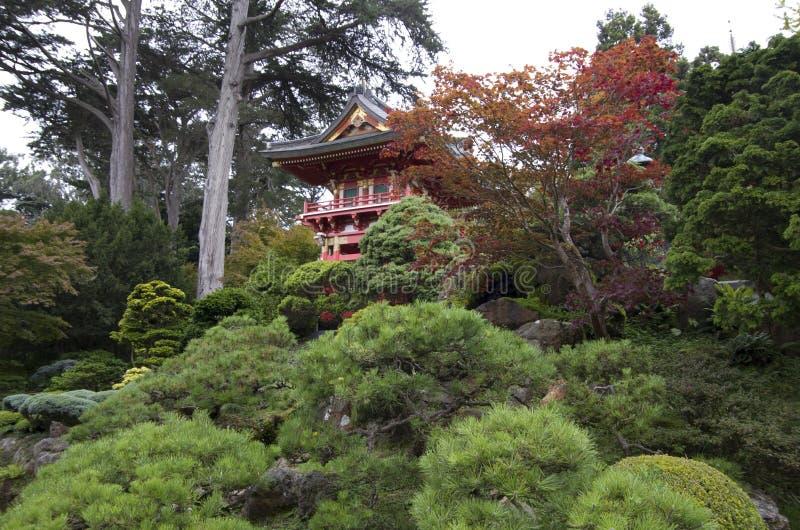 Японские заводы сада стоковое фото rf