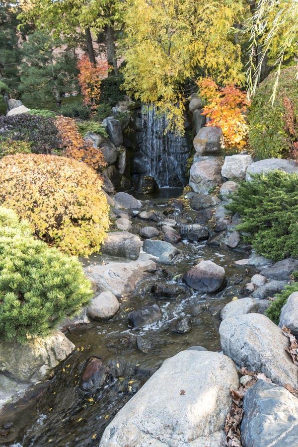 Японский водопад сада в осени стоковое изображение rf