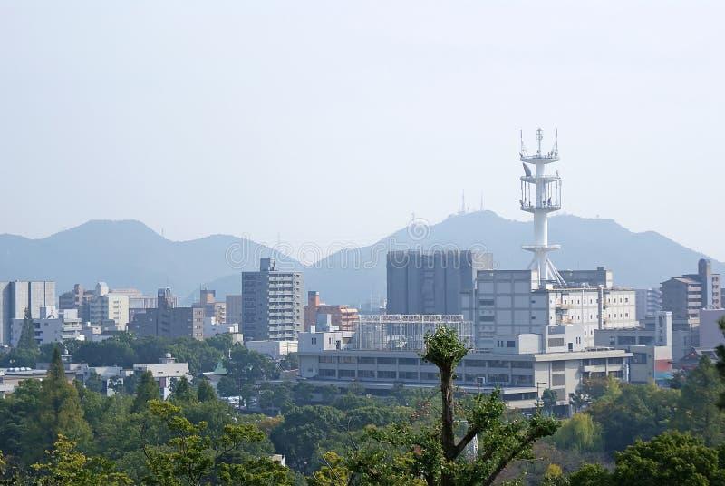 японский выселок стоковые изображения