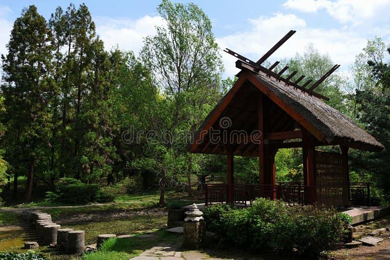 Японский павильон с прудом и столбцами как тропа через пруд, деревья Дальнего востока и декоративные кустарники вокруг, весенний  стоковое фото rf