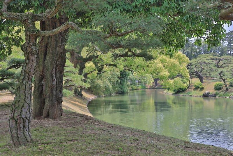Японский сад с прудом и рекой, садом Ritsurin стоковые фото