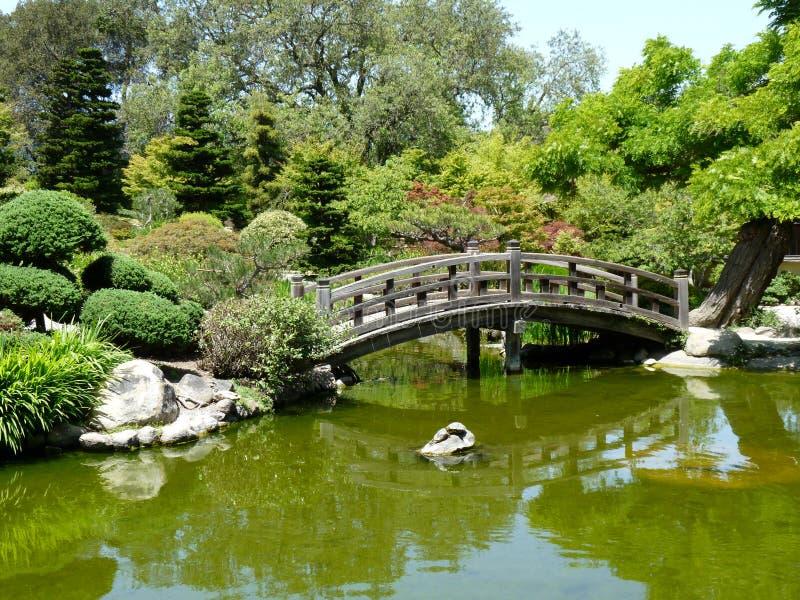 Японский сад стоковые фотографии rf