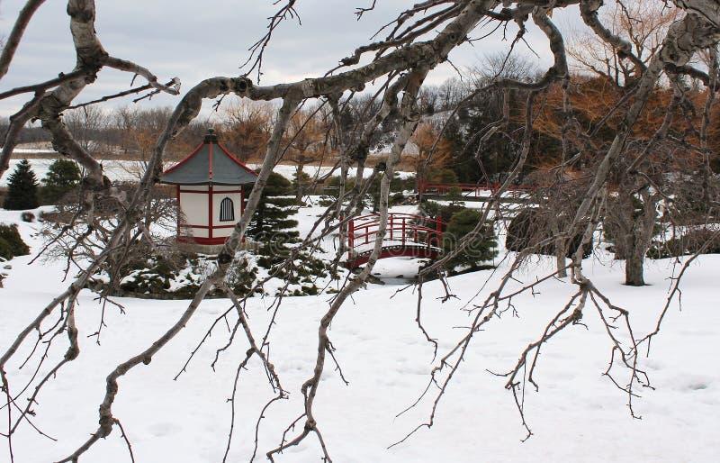 Японский сад в снеге стоковое изображение