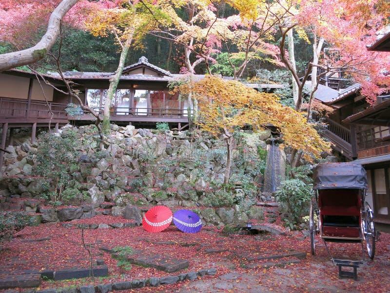 Японский сад в цветах осени стоковые фотографии rf
