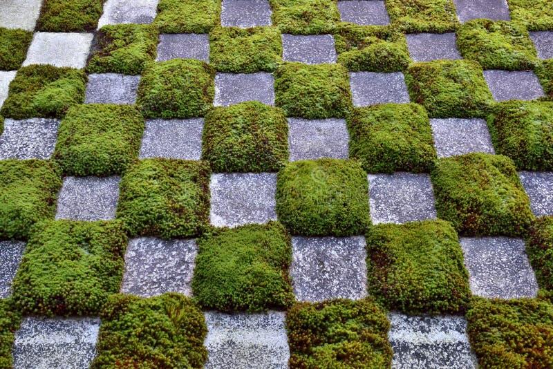 Японский сад мха стоковое фото rf