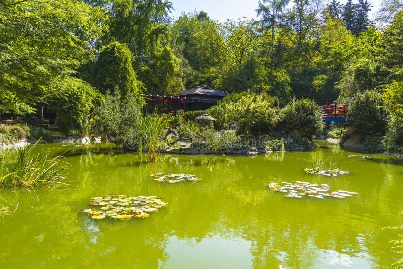 Японский сад стоковое фото