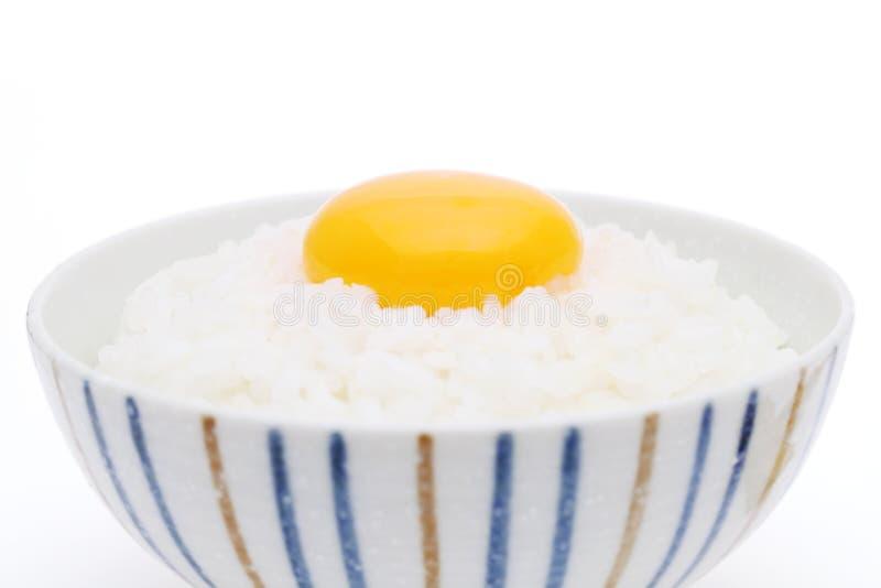 Японский сваренный рис с сырцовым яйцом стоковая фотография