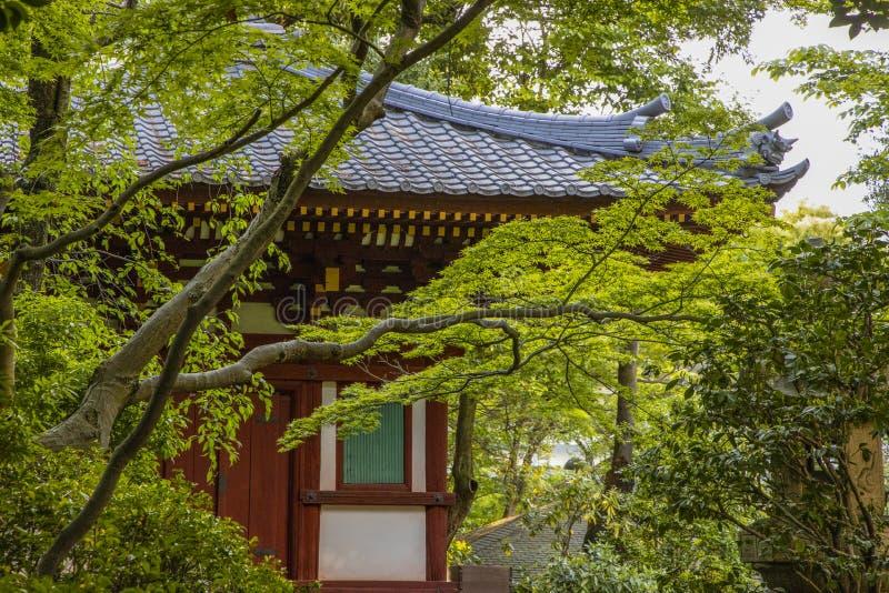Японский чайный домик со склоняя крышей стоковая фотография rf
