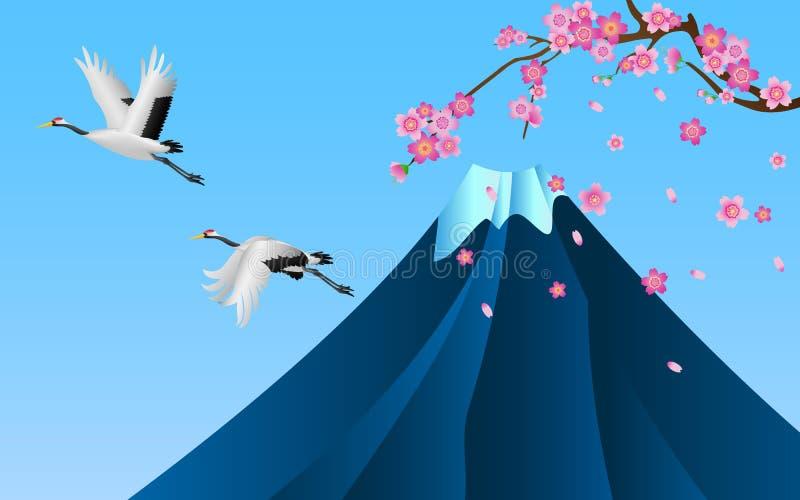 Японское летание кранов над зацветать горы Фудзи и вишневого цвета Сакуры иллюстрация штока