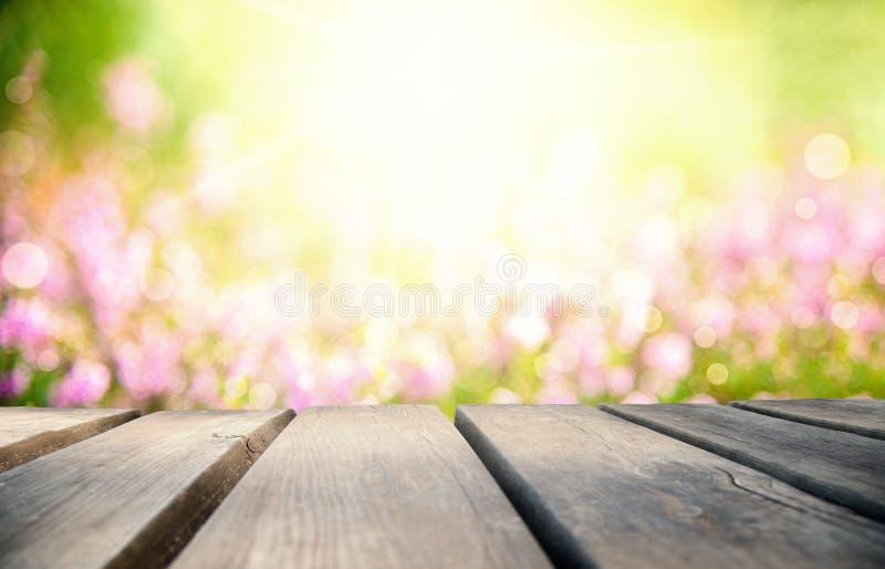 Яркая деревянная доска с полем цветка Эрики как предпосылка стоковое изображение rf