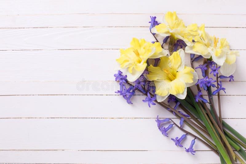 Яркая желтая и голубая весна цветет на покрашенной белизне деревянной стоковое изображение