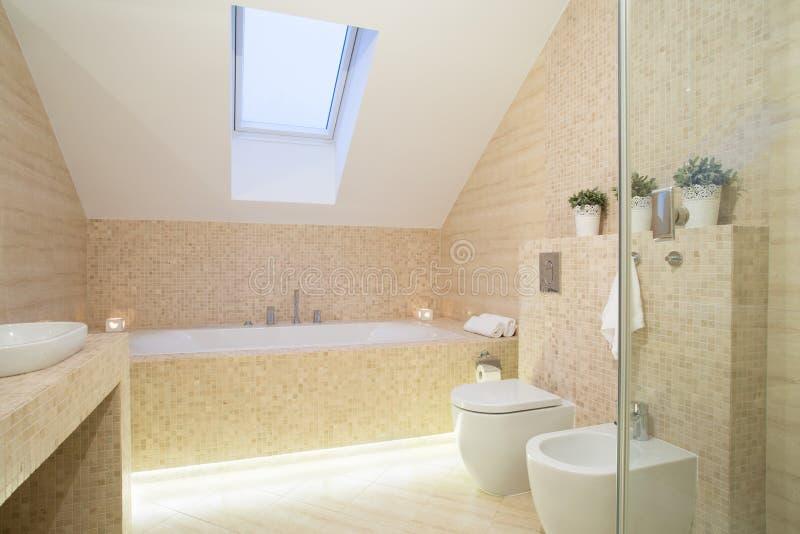 Яркая исключительная ванная комната стоковые изображения rf