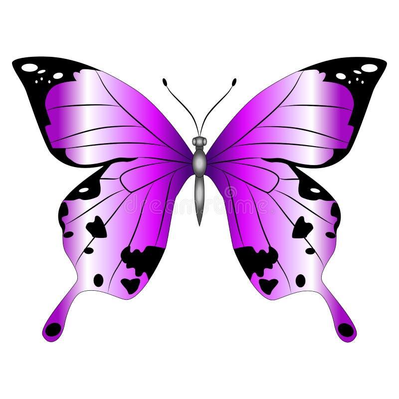 Яркая красивая фиолетовая бабочка Изолированная иллюстрация вектора