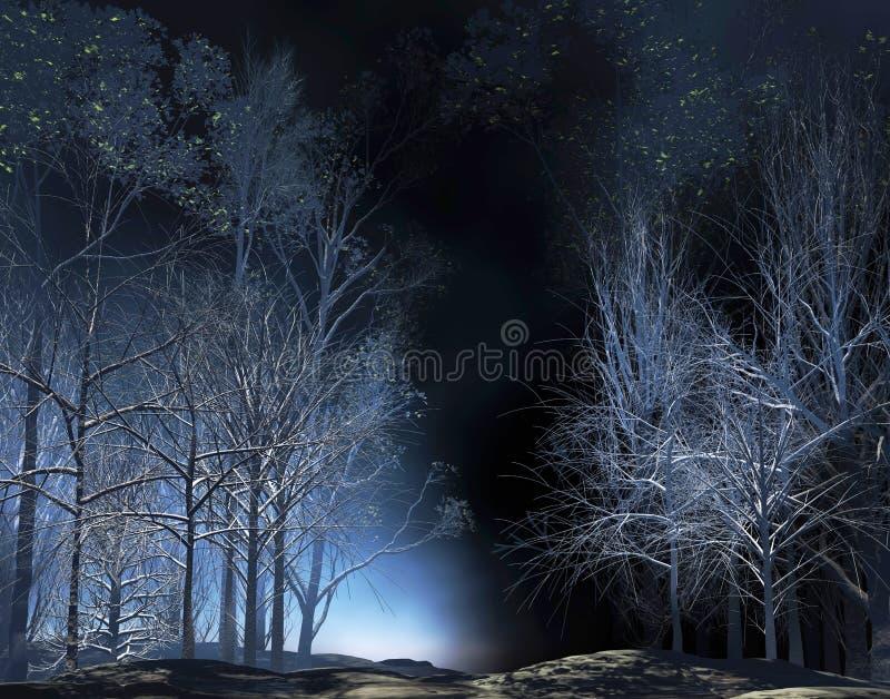 Яркая ноча бесплатная иллюстрация
