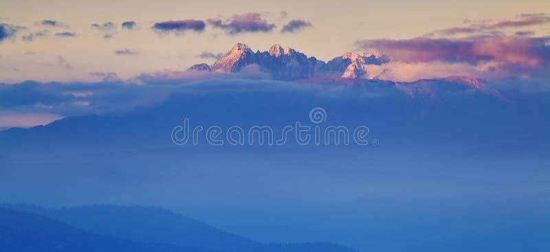 Яркая свертывая сельская местность в выравниваясь свете Живописный день и шикарная сцена весной приурочивают Прикарпатские горы,  стоковая фотография rf