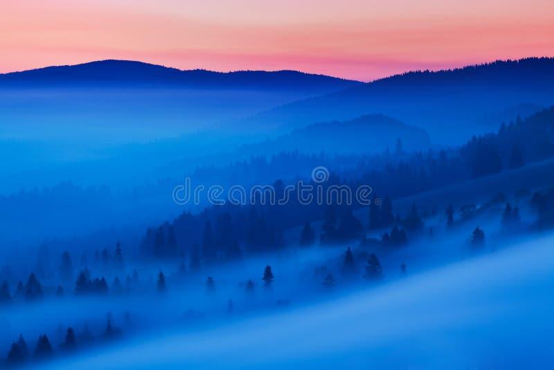 Яркая свертывая сельская местность в выравниваясь свете Живописный день и шикарная сцена весной приурочивают Прикарпатские горы,  стоковое фото rf