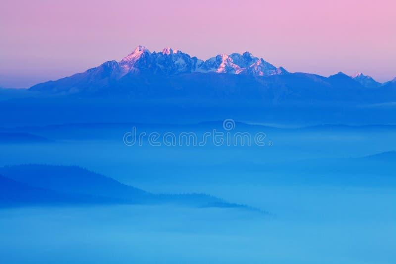 Яркая свертывая сельская местность в выравниваясь свете Живописный день и шикарная сцена весной приурочивают Прикарпатские горы,  стоковые фото