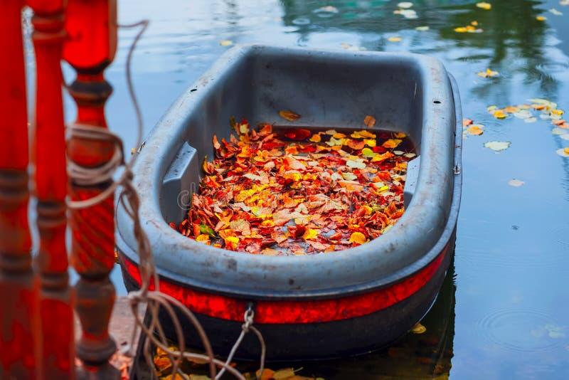 Яркая сцена осени, пакостная шлюпка в пруде осени, упаденные яркие листья на береге, живописные цвета природы стоковое изображение