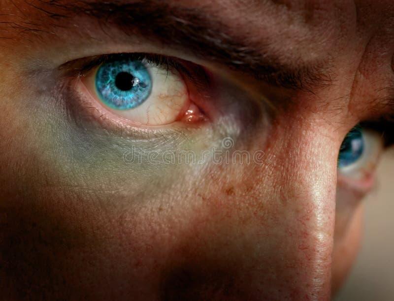 яркие глаза стоковая фотография rf