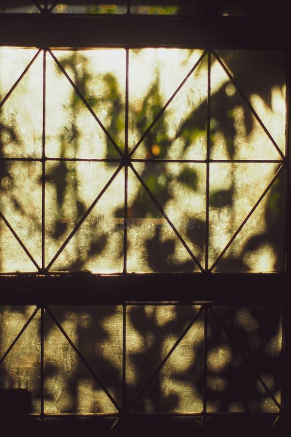 Яркие лучи солнца освещают комнату через старое окно стоковые фото
