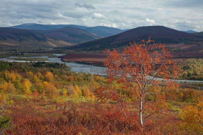 Яркие цвета осени в долине стоковое изображение
