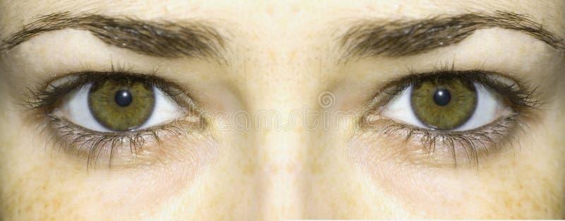 Жёлто-зелёный цвет глаз