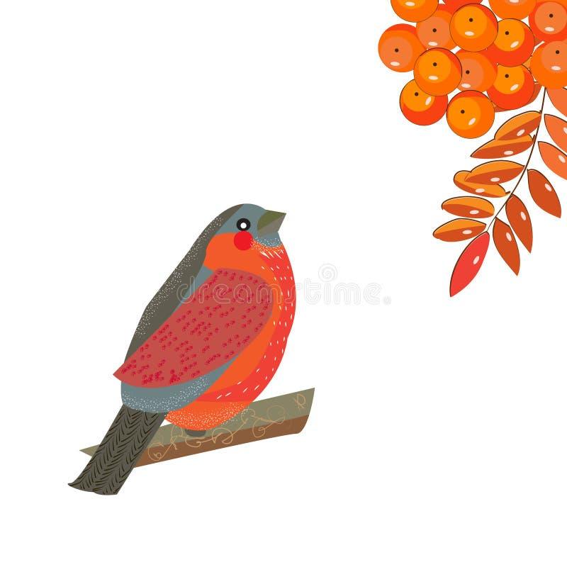Яркий маленький bullFinch сидит вверх и смотрит ягоды и пастбище иллюстрация вектора